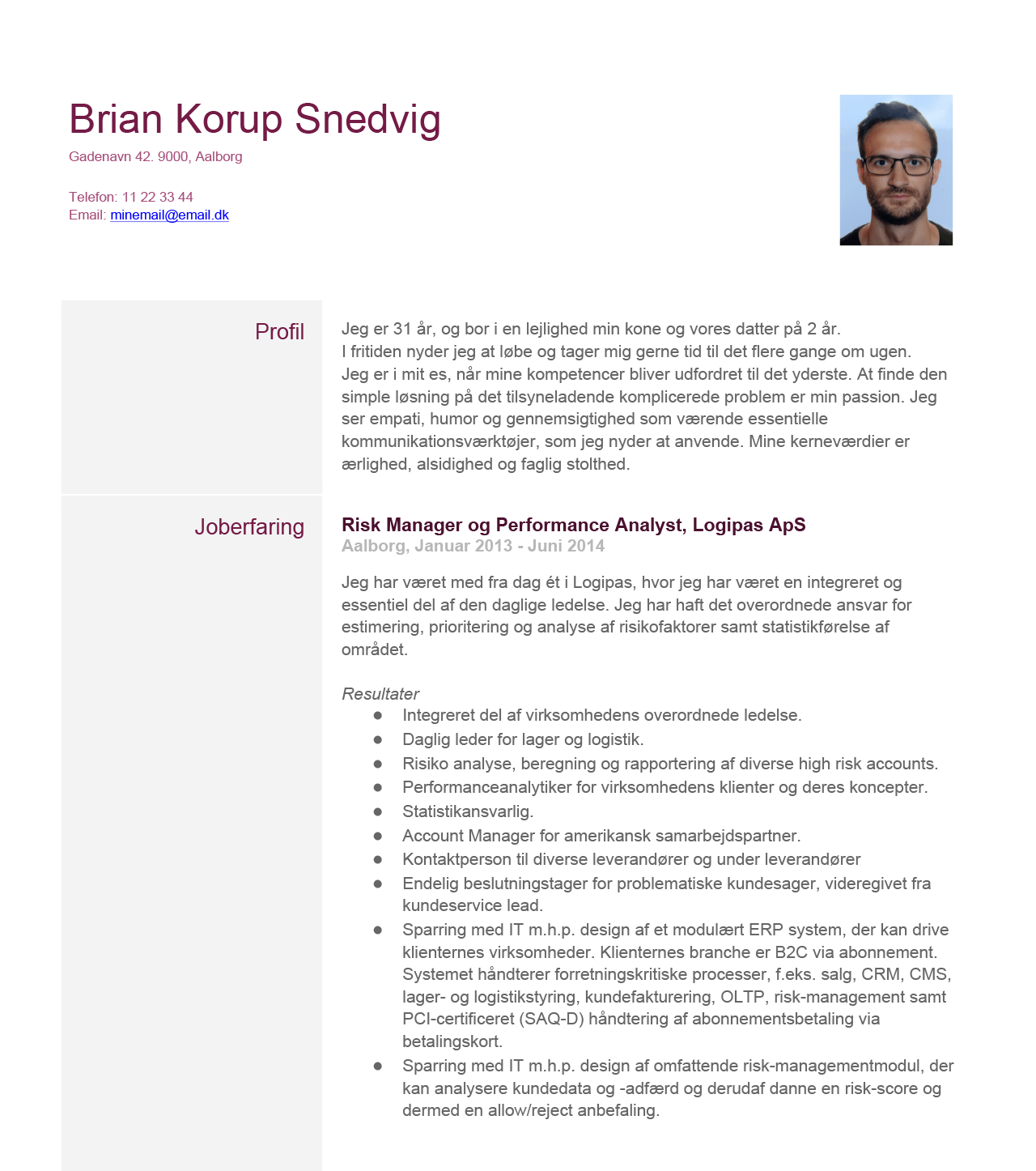 An image snippet of Brian Snedvigs CV from 2014 in Danish