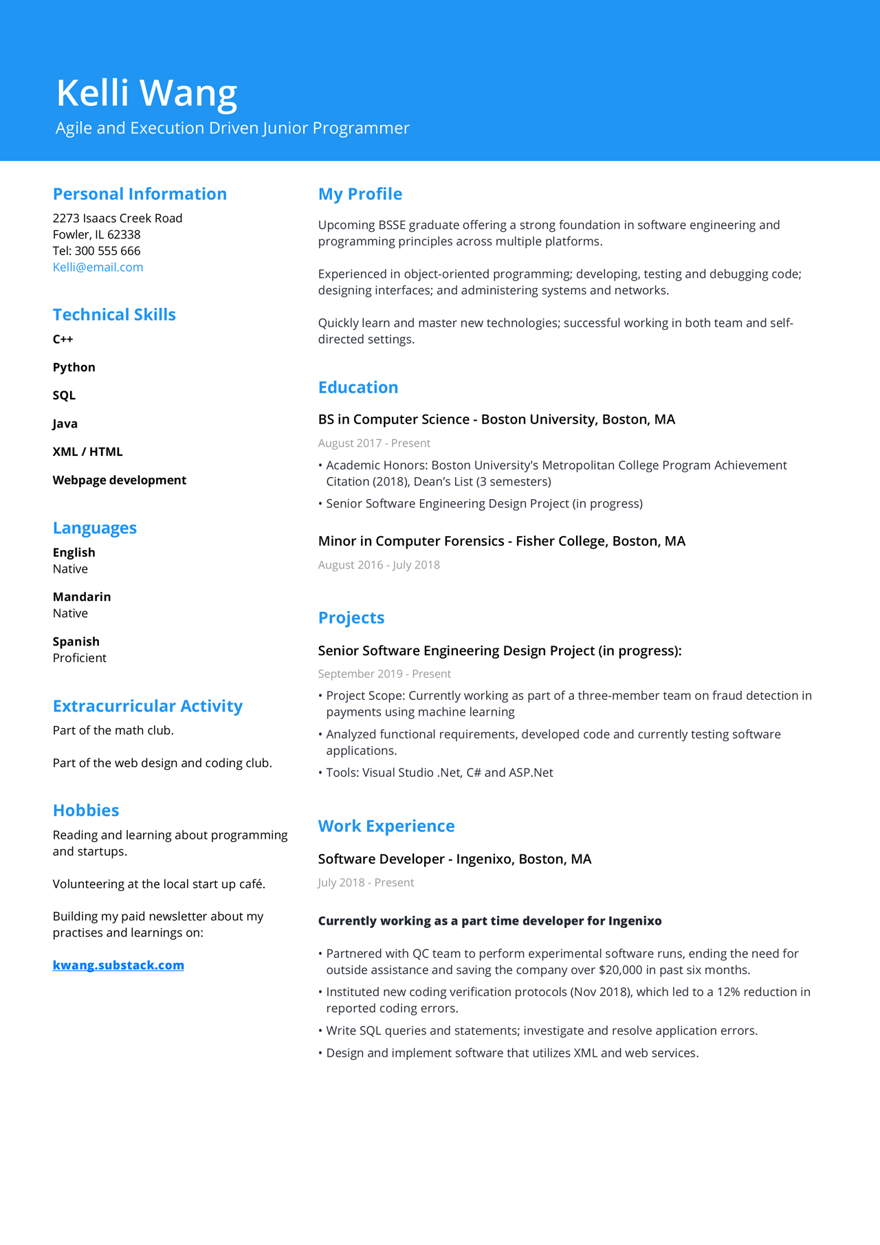 Image of a Student CV made with a student cv template